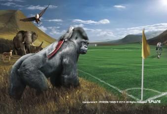 Photographe Animalier & photomontage animaux en Paca / Yann PEREIRA/ Gorille, éléphant,animaux afrique Publicité-Conté,Gorille.animaux.foot.Coup d'Afrique des Nation