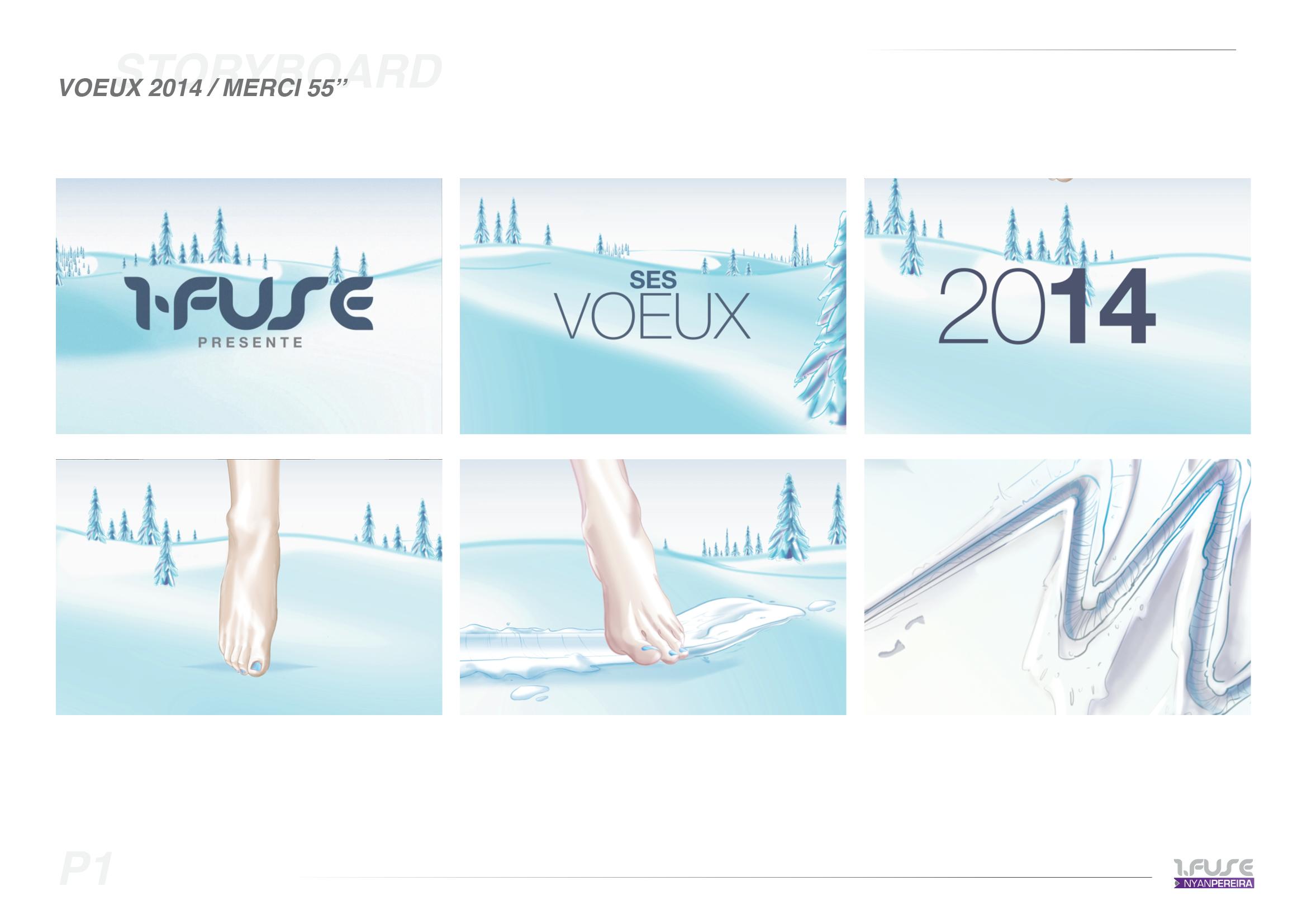 SB.VOEUX2014
