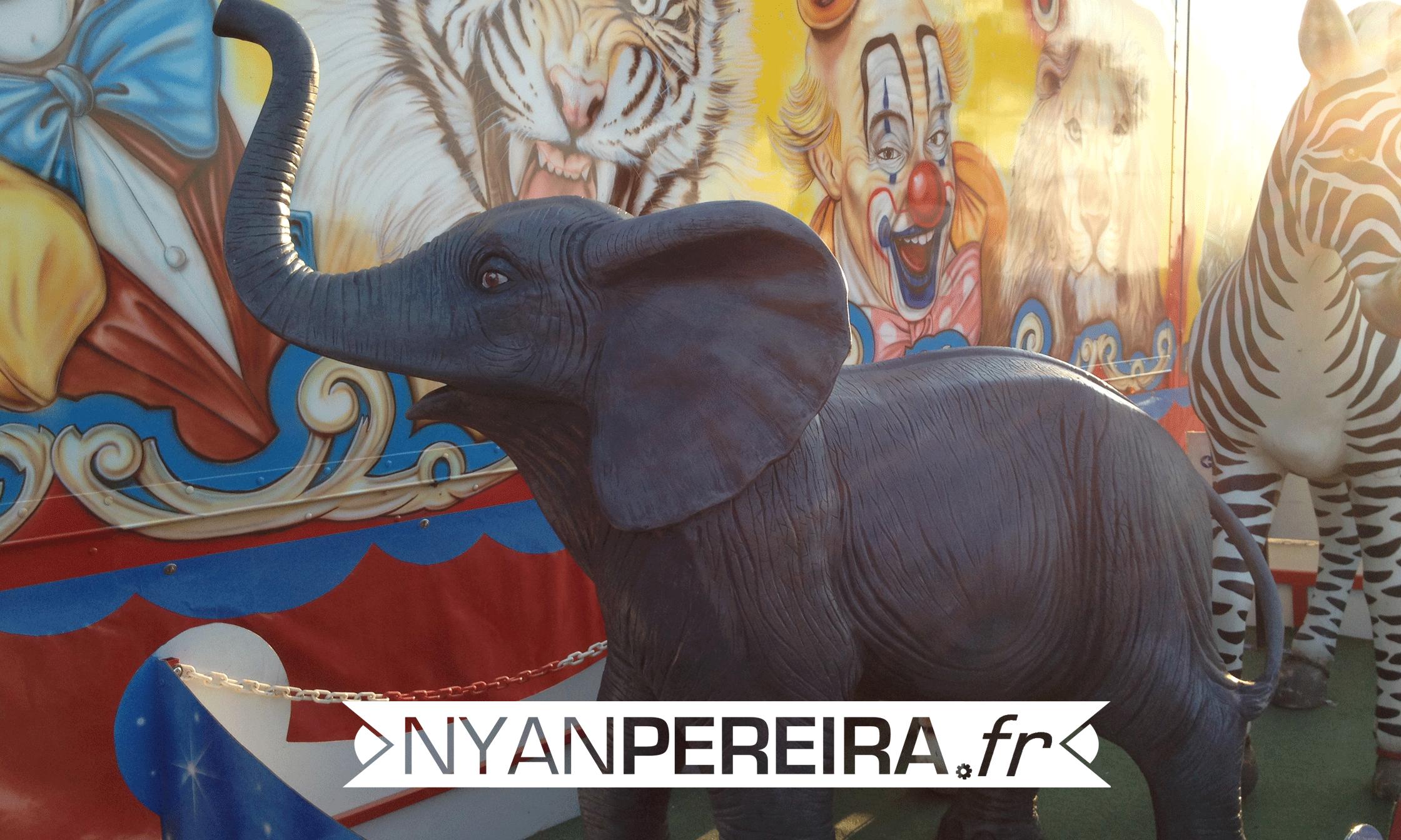 Artiste.animaux.peinture.Cirque.decoration.5